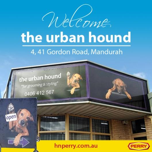 urban hound